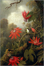 Muursticker  Hummingbird and Passionflowers - Martin Johnson Heade