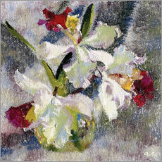 Gallery print  Orchids II - Augusto Giacometti