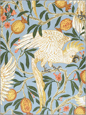 Gallery print  Cockatoo and Pomegranate - Walter Crane