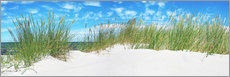 Acrylglas print  Panorama of Dunes, Baltic Sea - Art Couture