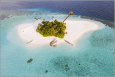 Acrylglas print  Aerial view of dream island in the Maldives - Matteo Colombo