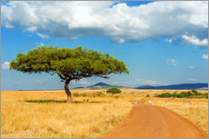 Premium poster A lonely tree in Africa