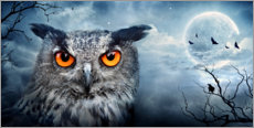 Premium poster Owl in a full moon night