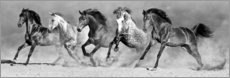 Canvas print  Power of horses - Art Couture