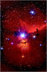 Hout print  Horsehead Nebula in the constellation Orion - MonarchC