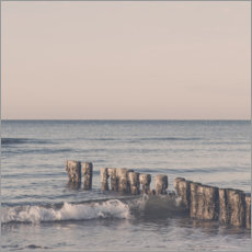 Acrylglas print  Pink hour at the Baltic Sea - Andrea Haase