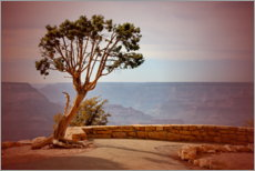 Canvas print  Boom over de Grand Canyon - fotoping
