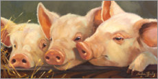 Canvas print  Three little pigs - Carolyne Hawley