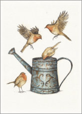 PVC print  Robins at the watering can - Mike Koubou