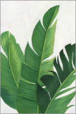 Canvas print  Palm leaf study - Grace Popp