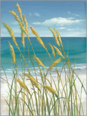 Acrylglas print  Summer Breeze I - Tim O'Toole