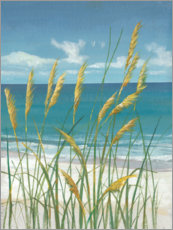 Acrylglas print  Summer Breeze II - Tim O'Toole