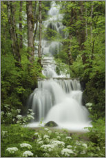 Acrylglas print  Waterfall in the forest, France - Tobias Richter