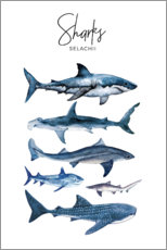 Canvas print  Sharks - Art Couture