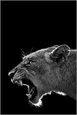 Canvas print  Roaring lioness - Art Couture