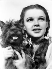 Canvas print  Judy Garland, the Wizard of Oz