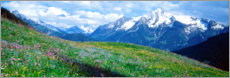 Premium poster View of the Zillertal Alps