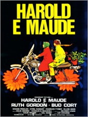 Acrylglas print  Harold and Maude (Italian) - Entertainment Collection