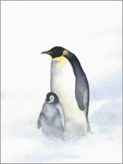 Canvas print  Penguin mother - Ray Shuell