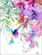 Canvas print  Hummingbird in the hanging garden - Rachel McNaughton