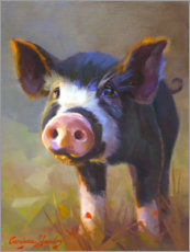 Canvas print  Black piggy - Carolyne Hawley