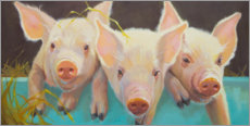Canvas print  Life as a Pig I - Carolyne Hawley