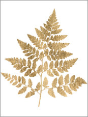 Premium poster  Graphic Gold Fern I - Studio W