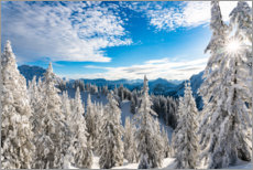 PVC print  Winter wonderland in the Algäu - Michael Helmer
