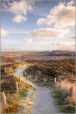 PVC print  Path through the nature reserve Morsum cliff on Sylt - Christian Müringer
