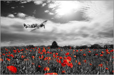 Muursticker  Spitfire poppy pass - airpowerart