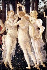 Muursticker  The Three Graces - Sandro Botticelli