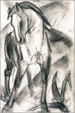 Muursticker  Young horse in mountain landscape - Franz Marc