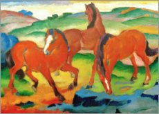 Acrylglas print  Grazing horses IV (The Red Horses) - Franz Marc