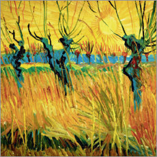 Acrylglas print  Willows at Sunset - Vincent van Gogh