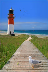 Muursticker  The road to the lighthouse by the sea - Monika Jüngling