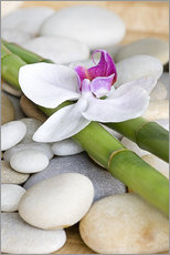 Muursticker  Bamboo and orchid II - Andrea Haase Foto
