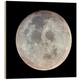 Hout print  The Moon - Stocktrek Images