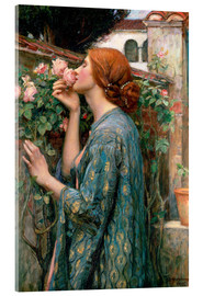 Acrylglas print  De ziel van de Rose - John William Waterhouse