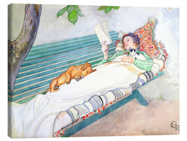 Canvas print  Woman lying on a bench - Carl Larsson