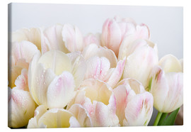 Canvas print  Pastel-colored tulips 06 - Nailia Schwarz