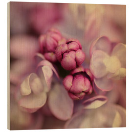 Hout print  Lilac - Evelyn Meyer