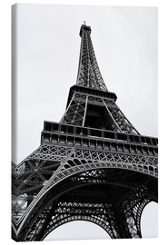 Canvas print  eiffel tower - Claudia Moeckel
