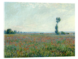 Acrylglas print  Field with poppies - Claude Monet