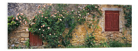 PVC print  Climbing roses on old stone wall - Ric Ergenbright