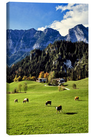 Canvas print  Alps and pasture cows - Ric Ergenbright
