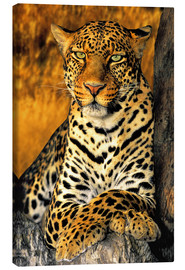 Canvas print  Enthroned Leopard - Dave Welling