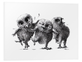 PVC print  Three crazy owls - Stefan Kahlhammer