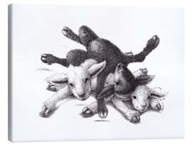 Canvas print  Three Sheep - Ball Of Wood - Stefan Kahlhammer