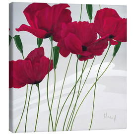 Canvas print  Poppies swayed by the wind - Franz Heigl