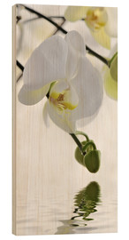 Hout print  Orchid - Atteloi